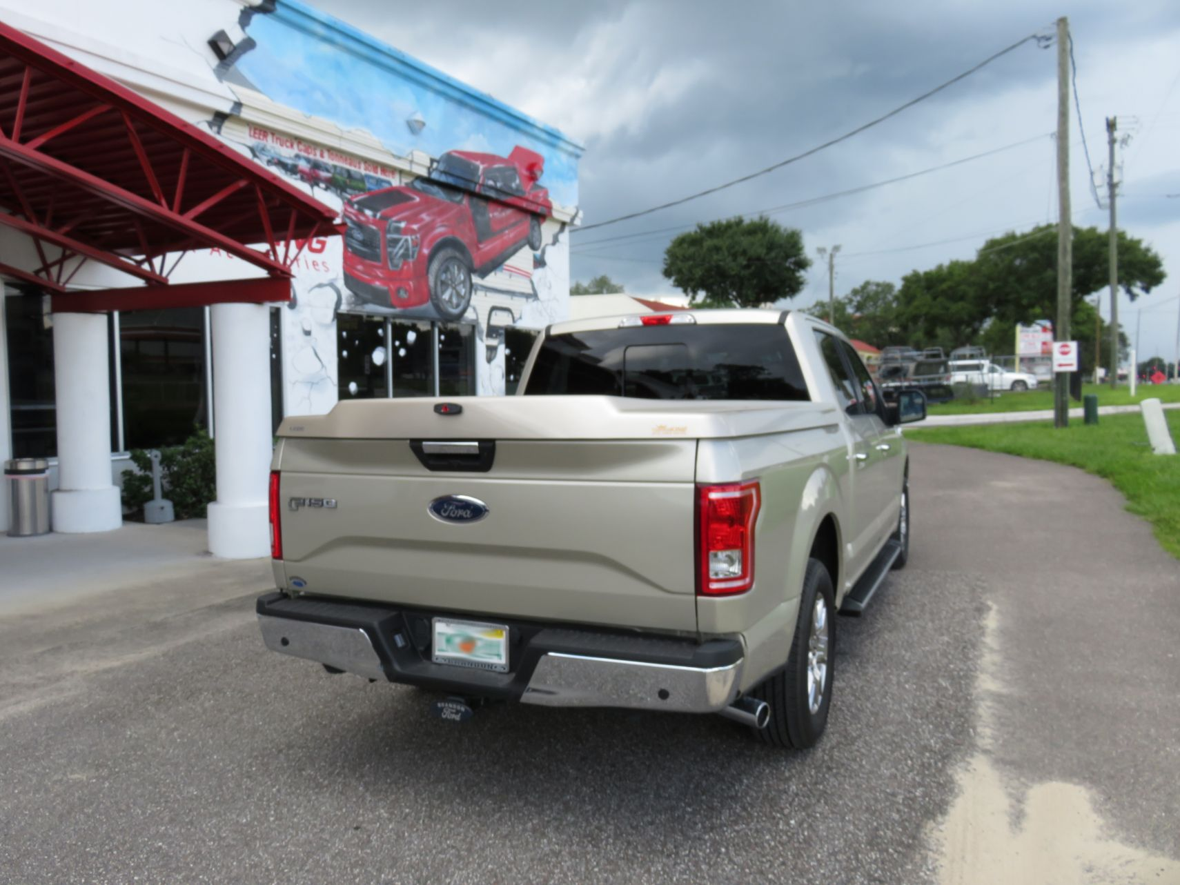 2017 Ford F150 with a Leer 700, Nerf Bars, Custom Hitch, and Tint by TopperKING in Brandon, FL 813-689-2449 or Clearwater, FL 727-530-9066. Call today!