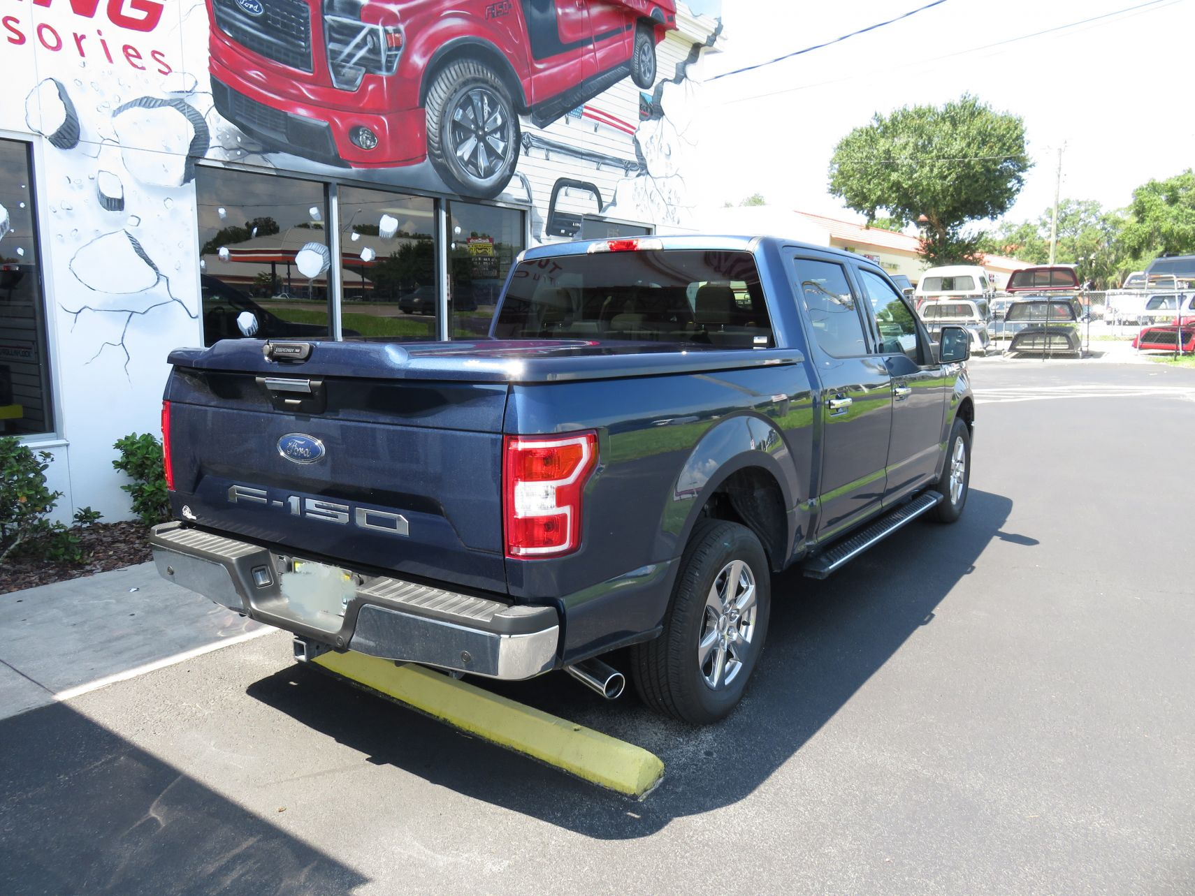 2018 Blue Ford F150 Undercover Elite, Nerf Bars, Tint, Custom Hitch by TopperKING in Brandon, FL 813-689-2449 or Clearwater, FL 727-530-9066. Call today!